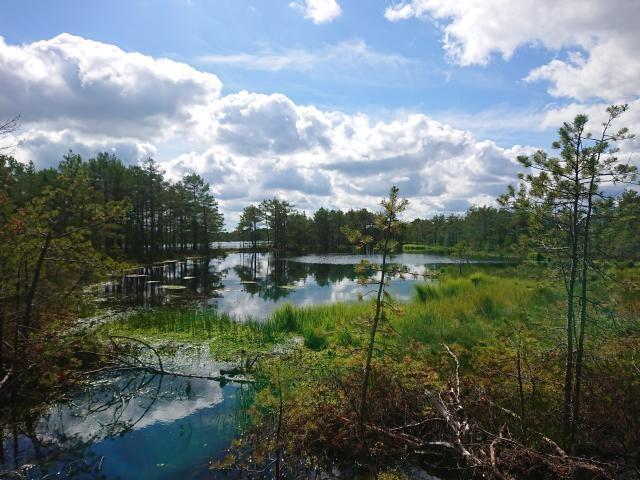 LIFE Mires Estonia