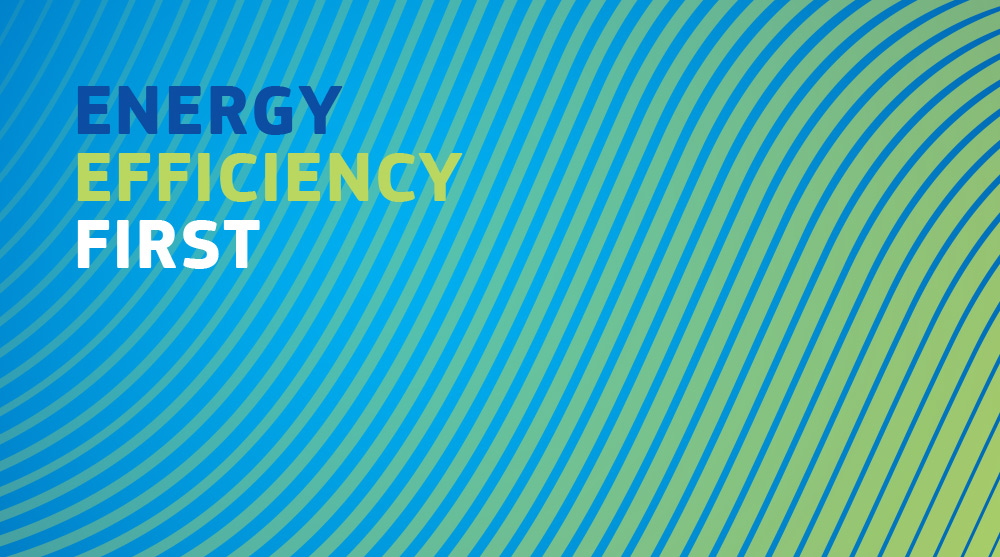 Energy Efficiency First