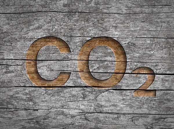 CO2 SAPLING