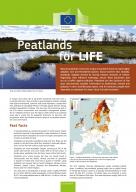 view of Peatland