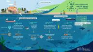 marine pollution infographic